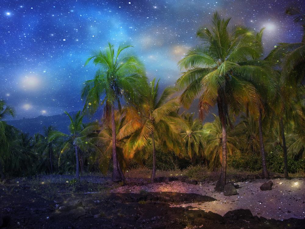 nighttime_paradise_blog